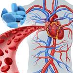 Viagra Wirkung und Blutkreislauf